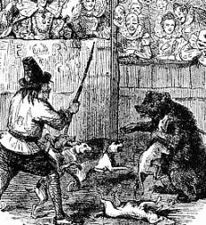 Bears had a rough time in Clerkenwell circa 1700