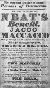 Jacco Macacco